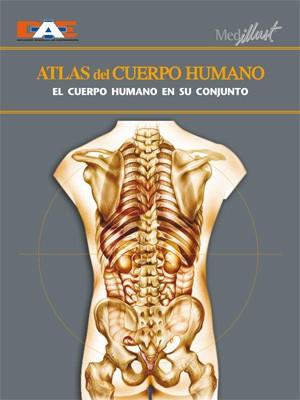 Biblioteca Digital » Manual de Anatomía y fisiología humana: Más de ...