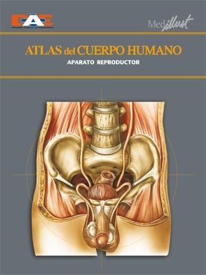 Biblioteca Digital » Categorías de los productos » Anatomía y Fisiología